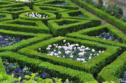 Giardino di labirinto